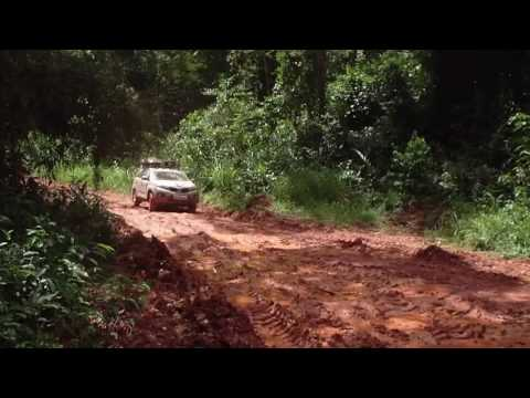 Dschungelfahrten im Kongo